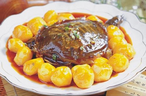 土豆烧野生甲鱼